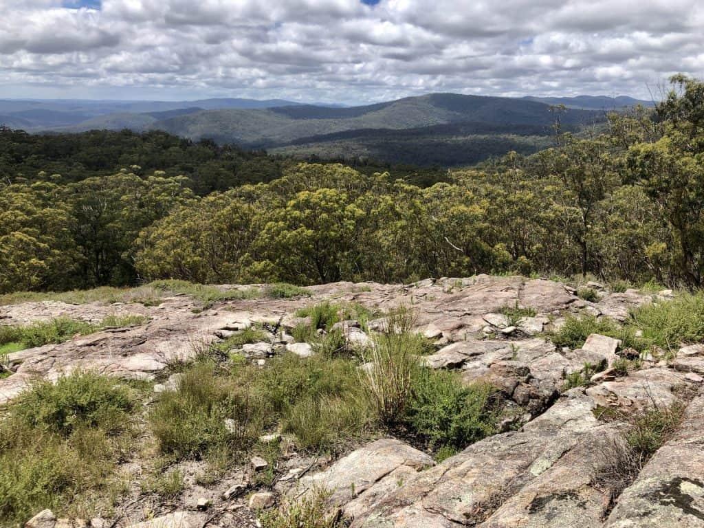 Sundew Lookout, Chaelundi Trail