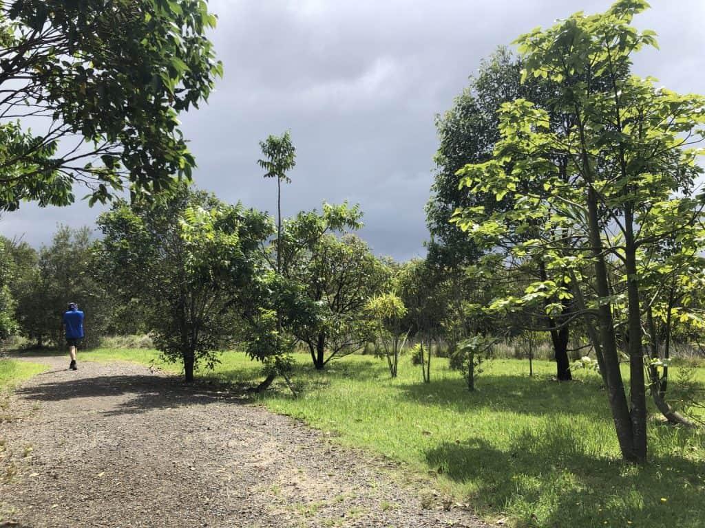 Boyters Land bird walk Path